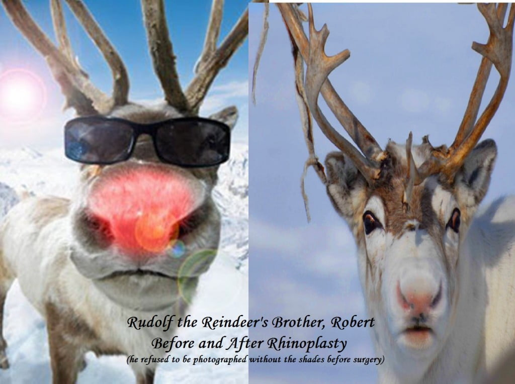 of rudolph the red...